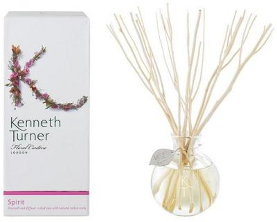 Kenneth Turner Reed Diffuser - Spirit